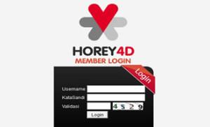 horey4d 300x182 HOREY4D